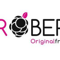 Logo Agroberry