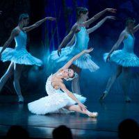 ballet-imperial-lago-de-los-cisnes_02