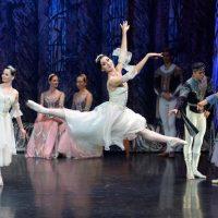 Ballet Imperial Ruso - El Lago de los Cisnes