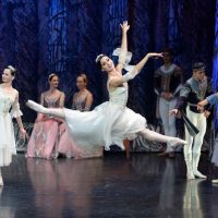 ballet-imperial-lago-de-los-cisnes_04