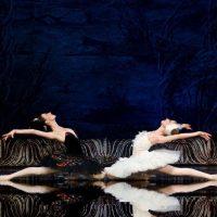 ballet-imperial-lago-de-los-cisnes_05