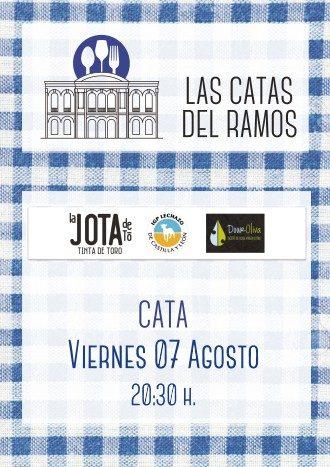 catas-7agosto-330x467