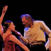 don-quijote-ballet-flamenco-03