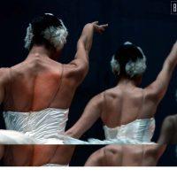 lago-de-los-cisnes-ballet-moscu-02