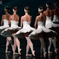 lago-de-los-cisnes-ballet-moscu-04