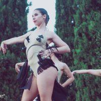 tik-tok-salson-dance-show-03