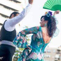 tik-tok-salson-dance-show-05